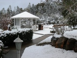 Snow in July.  Enjoy the winter in Stanthorpe.